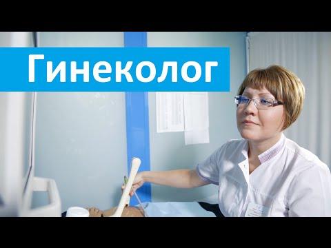 Гинекология. Медсемья о работе врача гинеколога. Запись в отделение гинекологии.