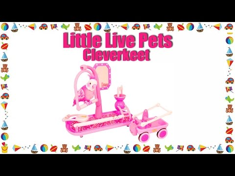 Review & Find Cheapest Price Little Live Pets Cleverkeet