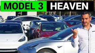 Tesla Model 3 Heaven on Earth