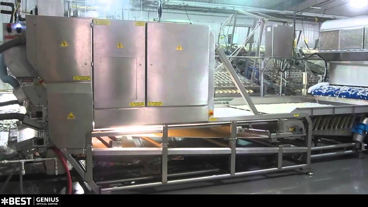 Warm water shrimp sorter Genius - TOMRA Sorting