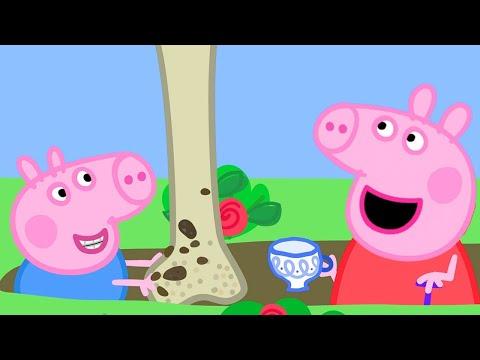 Peppa Pig Full Episodes | Season 8 | Compilation 75 | Kids Video