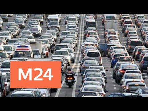 Москвичам посоветовали лучшее время для поездки за город - Москва 24