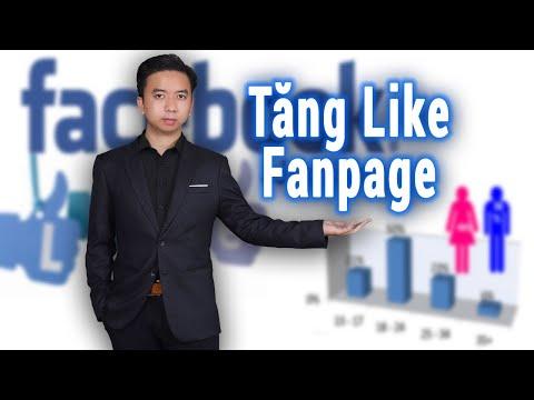 Hướng dẫn chạy quảng cáo tăng like fanpage siêu hiệu quả 2021 | Học khởi nghiệp 2021