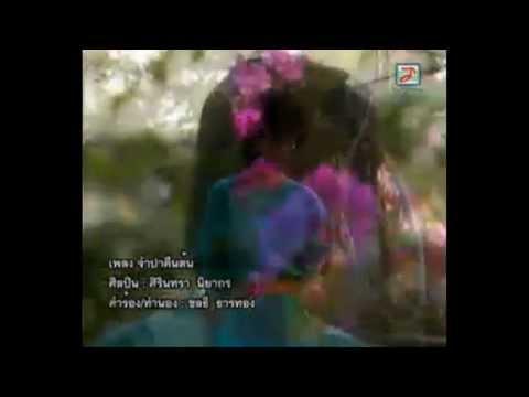 HD ศิรินทรา นิยากร-จำปาคืนต้น MV