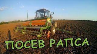 Подготовка почвы и посев рапса на орошаемых землях