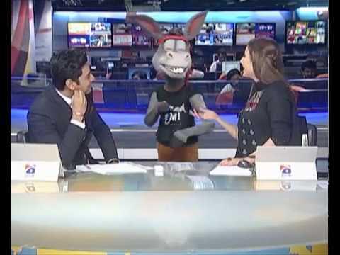 The Donkey King   Mangu Enters GEO News Room