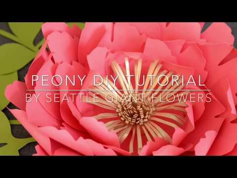 Peony paper flower DIY tutorial by Seattle Giant Flowers.