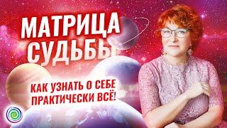 МАТРИЦА СУДЬБЫ – КАК УЗНАТЬ О СЕБЕ ПРАКТИЧЕСКИ ВСЁ? – Виктория Мелькова и Екатерина Самойлова