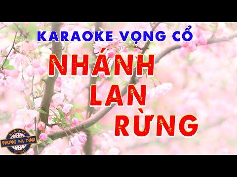 Vọng cổ - Nhánh lan rừng | Karaoke song ca