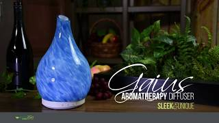 Gaius Aromatherapy Glass Essential Oil Diffuser - Instructions & Cleaning