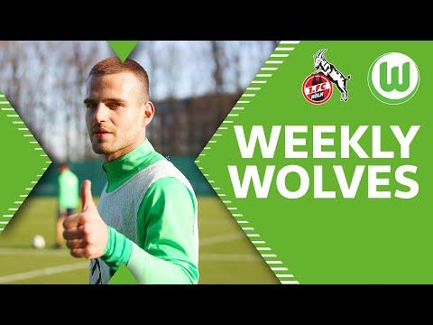Neuzugang Pongracic & ein schnelles Wiedersehen | Weekly Wolves | 1. FC Köln - VfL Wolfsburg