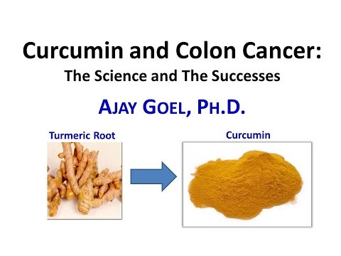 Curcumin and Colon Cancer the Science and the Successes Presented by Dr. Ajay Goel - 4/28/2016