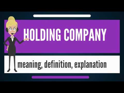 What is HOLDING COMPANY? What does HOLDING COMPANY mean? HOLDING COMPANY meaning & explanation