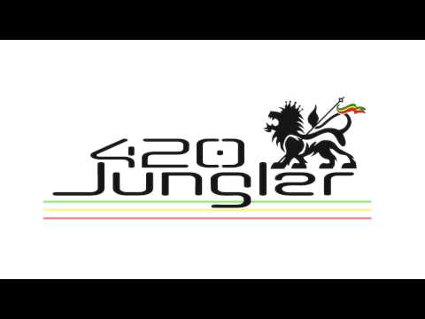 The Run Tingz Cru & Family - The Revolution Time Mix (JUNGLE MIX)
