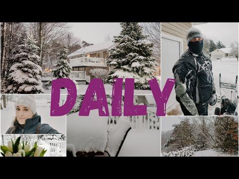 Daily vlog | Furtună de zăpadă in Michigan
