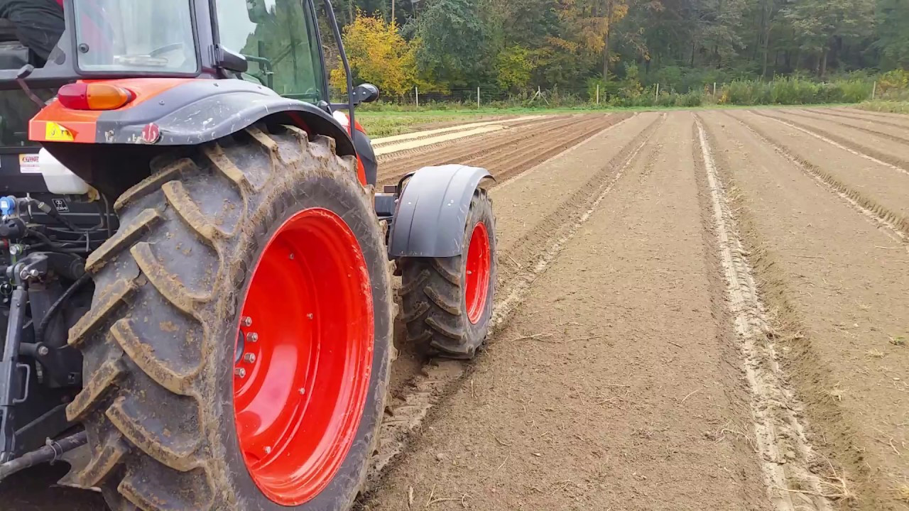 Semis en pleine terre des faines de h tre a la pepiniere crete youtube - Semis de carottes en pleine terre ...
