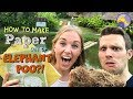 How to make Paper out of Elephant Poo?! | Maddie Moate