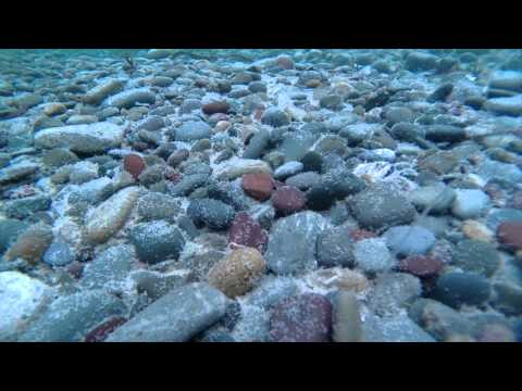 Middle cove beach, under water raw footage 1