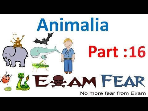 Biology Animalia part 16 (Arthropoda) CBSE class 11 XI