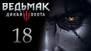 Ведьмак 3 прохождение игры на русском - Фальшивые документы [#18]