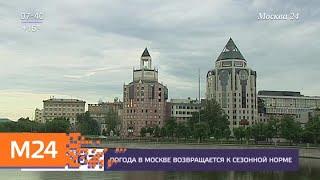 Желтый уровень погодной опасности объявлен в Москве 23 мая - Москва 24