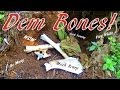 My Super Scary Buried Blouse And Bones In Fresh Dirt Discovery