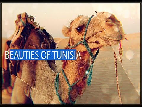 TUNISIA TRAVEL - 2018 - Tunisie Voyage - Hymne Tunisien Mezoued - 2018