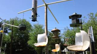 E Houston St Bird Feeding Station 1 05032014pt1