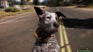 Far Cry 5 Ultra Settings Gameplay Benchmark (FX 8370, R9 290)