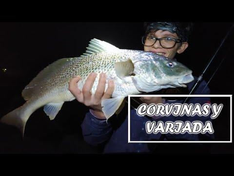 Buena Pesca de