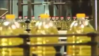 vuclip SUNFLOWER OIL PRODUCTION by SORRISO FOODS - زيت دوار الشمس
