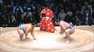 平成28年大相撲九州場所 Sumo -Kyushu Basho.