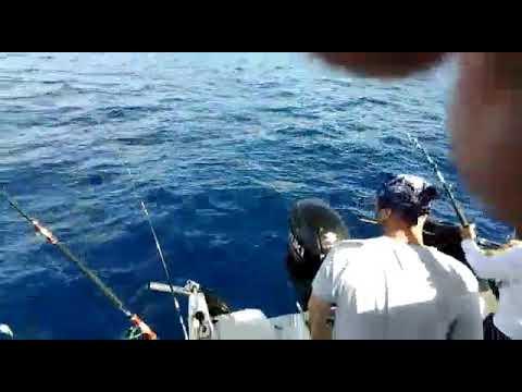 Gavin Sea Fishing Tenerife