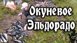 Карелия рыбалка. Релакс видео.(Рыбалка в Карелии. Крупный окунь, клев на спиннинг и на донку. ссылка на канал http://www.youtube.com/channel/UCD5s3Z_Q0ndSgxmR5hQWdd..., 2016-08-01T22:04:14.000Z)
