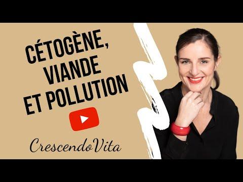 Cétogène, viande, pollution : faut-il diminuer voire arrêter la viande ? from YouTube · Duration:  7 minutes 15 seconds