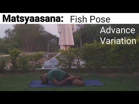 matsyasana fish pose  matsyasana with padmasana