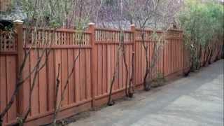 Steve's Handyman Service - Redwood Fence Project - San Anselmo, Ca  (marin County)