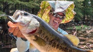 Bass Fishing in Frog Heaven