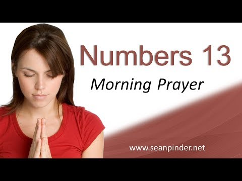 DON'T MISS YOUR MOMENT - NUMBERS 13 - MORNING PRAYER