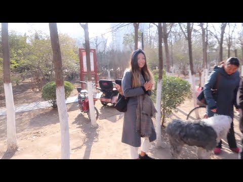 Exploring Kaifeng, China- CHICHI ZHANG VLOG #13