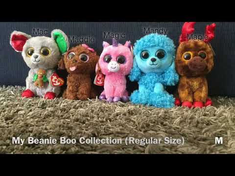 My Beanie Boo Collection (Regular Size) ~ Codys Beanie Boos