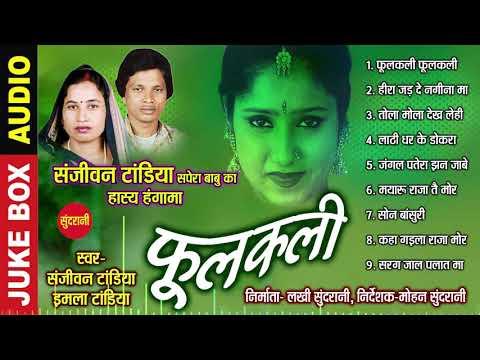 Phoolkali Juke Box  || Sanjiwan Tandiya & Imala Tandiya    || Audio  Song