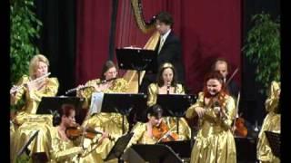 Doina Fischer & Orchester/Nussknacker - Tanz der Rohrflöten und Blumenwalzer von Tschaikowsky