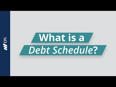 What is a Debt Schedule?