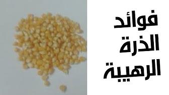 فوائد الذرة محمد الفايد Youtube