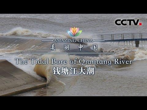 《美丽中国》 钱塘江大潮   CCTV
