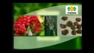 Extracto Semilla de Uva para mejor salud de las arterias
