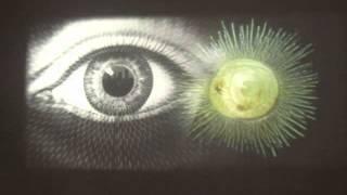 "Projection #7 ""Ray Day Eye Shun"" @Rabbithole Gallery Dumbo Brooklyn NYC"