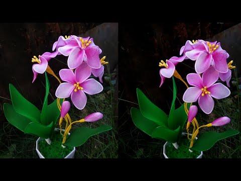 Tutorial bunga anggrek