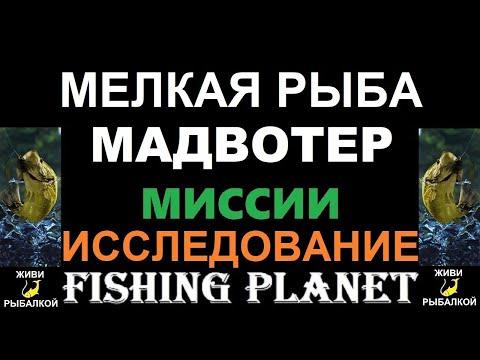 Мелкая рыба Мадвотер - миссия Fishing Planet